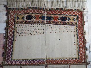 Qhashqhai Hors cover wool on wool size:163 148 cm price: POR