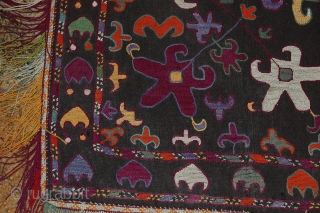 A BEAUTIFUL LAKAI FROM UZBEKISTAN.FOR MORE INFORMATIONS, PLEASE CONTACT ME