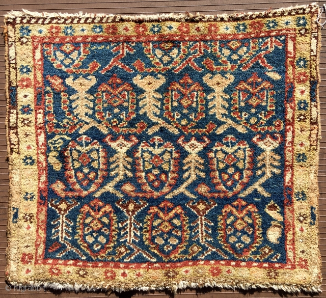 """PERSIAN BAGFACE.  I'm guessing somewhere in NWP.  Cotton foundation, single-wefted. 28"""" x 24"""" (71 cm x 61 cm).  Delicately drawn botehs separated by figures that resemble scorpions, (but what  ..."""