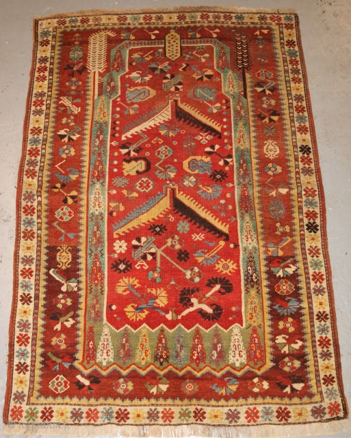 Antique Western Anatolian Milas prayer rug of early design with superb soft wool and wonderful colour. www.knightsantiques.co.uk  Size: 5ft 7in x 3ft 10in (170 x 117cm).  2nd half 19th century.  This prayer rug belongs  ...
