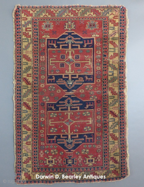 Small Caucasian, possibly a Shirvan(?),