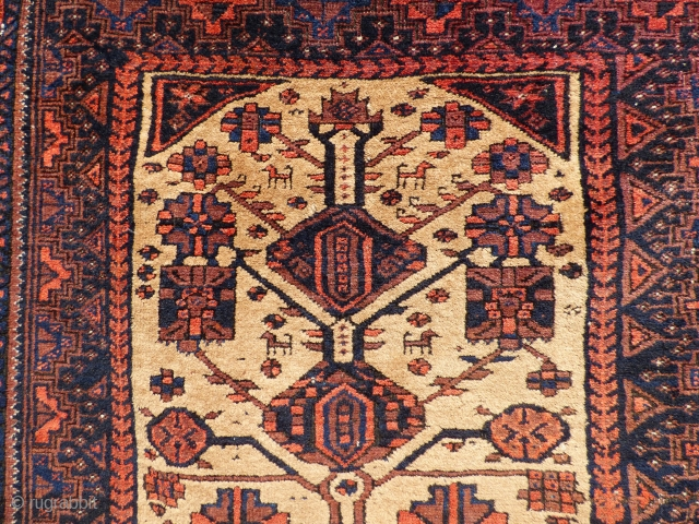 Baluch Tree of Life Rug - Sheep wool and natural camel hair on wool foundation Age: Late 19th century Condition: Good even pile except for wear lower end, sides and ends original, side cords  ...
