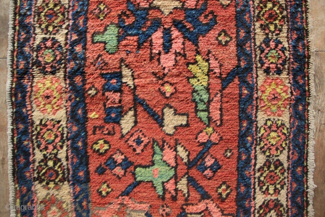 "Gorevan runner, North West Persia, ca 1900 2'3"" x 8'1"" full pile, only one tiny low spot."