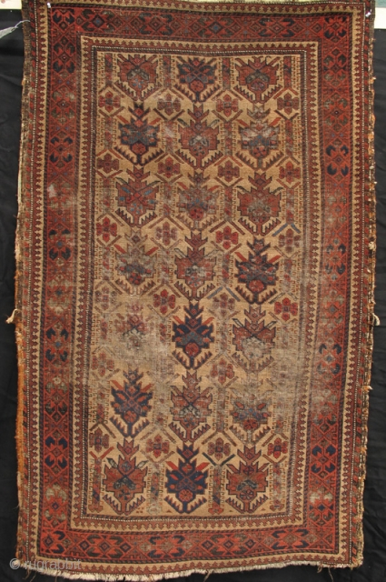 """Camel field Belouch with excellent drawing and nice blues. Turn of the 19th Century. (Dimensions 3'3"""" X 5'1"""")"""
