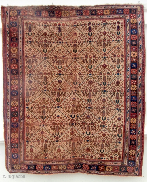 ANTIQUE AFSHAR RUG dating from the early 1900s. The rug has glowing natural colours especially in the flower heads which make up the main borders. There is corrosion in keeping with age  ...
