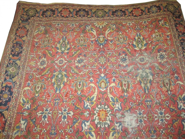 """Ziegler-Mahal Persian knotted circa in 1890, antique, 338 x 282 (cm) 11' 1"""" x 9' 3""""  carpet ID: P-4737 The black knots are oxidized, the knots are hand spun lamb wool,  ..."""