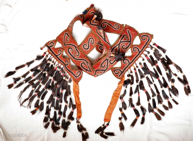 Kyrgiz or Uzbek, perhaps from Afghanistan, felt camel head-dress with applique stitching and horse-hair tassles, a rare tribal piece in excellent condition. A decorative camel headdress for weddings and other special occasions.  ...
