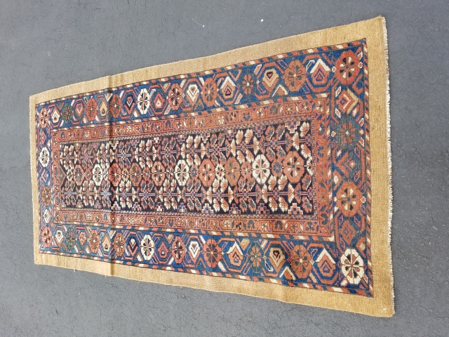 Sarab 3.3x6.2.  One small area of ware.  besides that all over even low pile. In good condition.