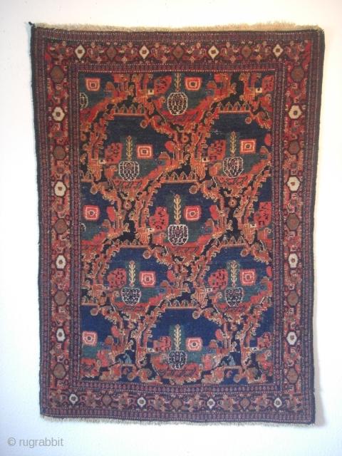 An old Senneh rug. Good shape but moth demages. 144 X 100 cm.
