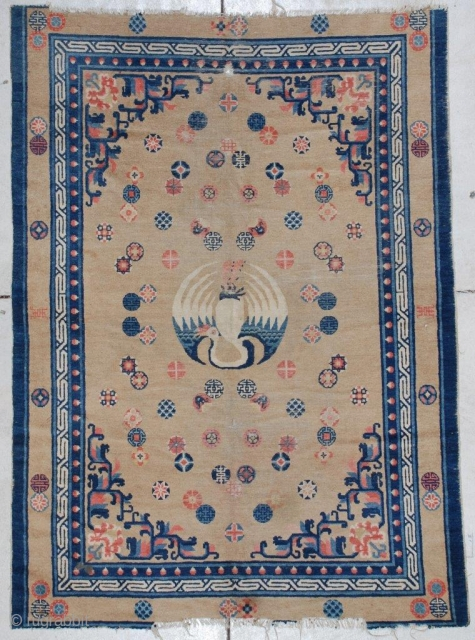 #7174 Antique Pao Tao Chinese Rug 