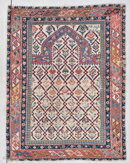 #7773 Marasali Shirvan Rug