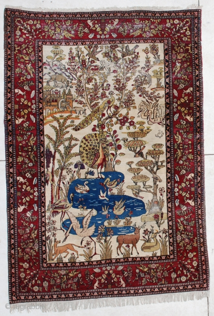 #6450 Laver Kerman Persian Antique Rug
