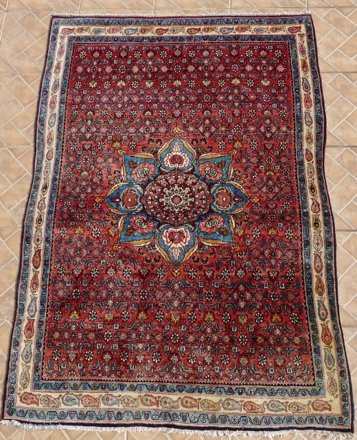 A Bidjar rug, 3.7ft x 5.3ft. around 1940/50 The design with a central rose-medallion on a madder red field with an allover herati pattern. Attractive ivory ground border with both motifs. full  ...