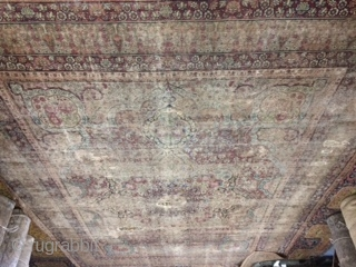 Large size 19th Century Kirman Laver collectible Rug Size:9x12.