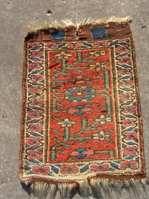 Bijar bag faces are not too common.  The colors of this example are great.  All natural dyes. Condition is pretty good.  It has low even pile all over.   ...