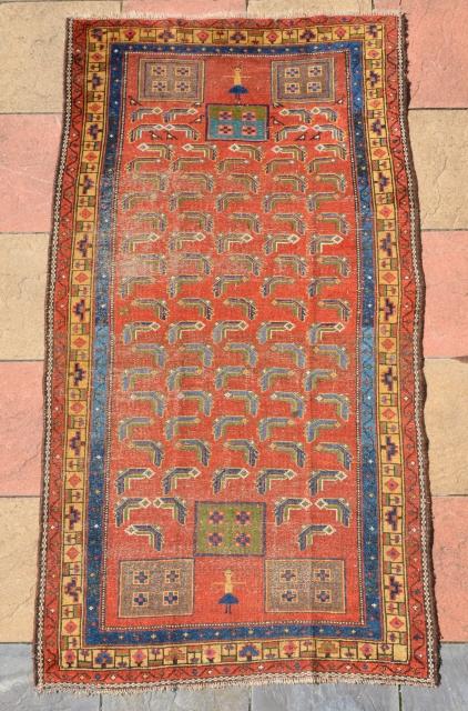 Kurdish rug 19th century 226 x 123 cm