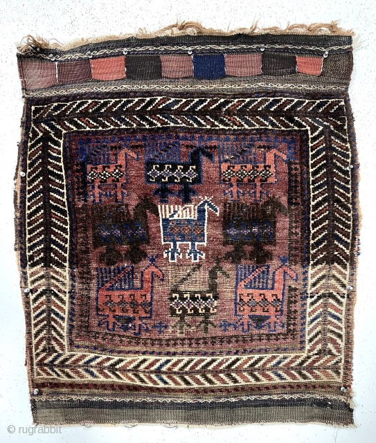 "Antique Baluch bird bagface. Nicely drawn large colorful birds with the iconic ivory center bird. Eye catching ""fish bone"" border. Relatively coarse weave with some wear as shown. All natural colors. Remnant  ..."