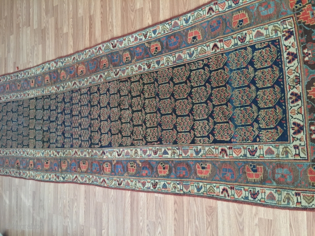 3-7x11-6 Kurdish runner wool on wool very good condition  Lots of aubergine color, circa second half of 1800