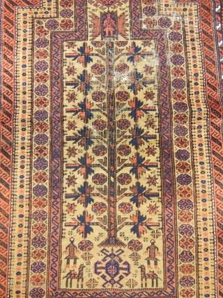 Antique Baluch Prayer Rug Size.147x95cm