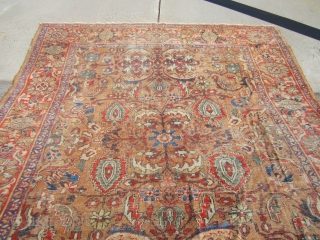 """beautiful antique camel ground persian mahal oriental rug measuring 8' 8"""" x 12' 3' solid rug very floppy low even pile no repair clean rug thin pile with even visible foundation very  ..."""