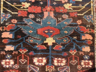 Kurd Bidjar circa 1800's. The picture of the full rug in the vertical position is a copy from an old photo. The rest of the pictures were taken by me in outdoor  ...