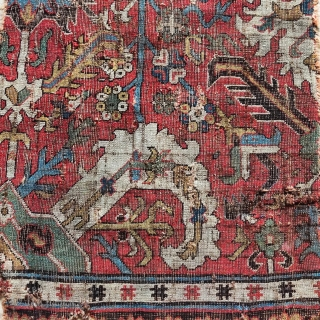 """Classical Caucasian Kuba blossom carpet fragment. Great color, drawing, and structure. 2'2""""x 3'7"""""""