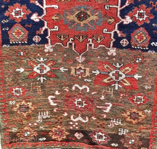 north west persian ( karadja ?) runner 