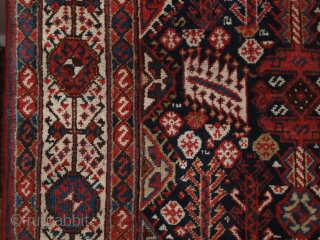 Antique Shekarlu Qashqai rug of classic design, a rug of unusually large size. www.knightsantiques.co.uk 8ft 6in x 5ft 7in (260 x 170cm).   Circa 1900.  This classic Shekarlu has a field full of tribal  ...