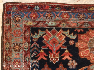 Antique Kurdish rug from the Greater Hamadan region, Mehraban district or from Borodjert village. www.knightsantiques.co.uk 