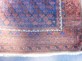 Persian Timuri Baluch, late 19th century, 3-4 x 4-11 (1.02 x 1.50), Shrub design, good floppy handle, even wear, very nice blues, browns are oxidized, rug was hand washed, half of original  ...
