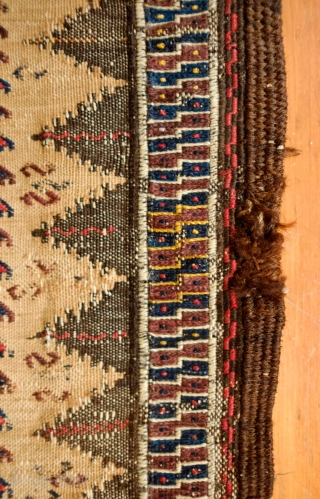Baluch Double Tree of Life Kilim, 3rd to 4th quarter of 19th Century.  This is most likely a sofreh kilim.  It has a bit of yellow silk in the bottom  ...
