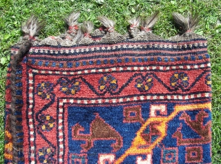 Luri, full piled, all woolen long haired, in good overall condition ,ca 330 x 155 cm . First quarth. 20th. Cent. Price including worldwide transport.  