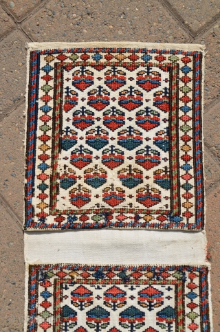"Antique Shahsavan flat woven mini-khorjin. 11"" X 24"" Circa 1900. Soumac bud and flower designs on cotton ground. All natural colors. In fine original condition."