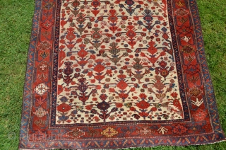 Khamseh Confederacy (Beharlu) prayer-format pile rug, 6 ft. 2 in. X 3 ft. 7-1/2 in. 19th C. Wool. Saturated natural dyes. Expert restoration of borders top and bottom.. Sides minimally reduced and  ...