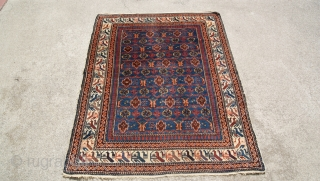 Shervan rug from the 1900 good condition all natural colors, unusual border.  