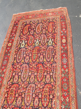 Antique Persian Bedjar Rug.
