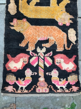 Tibetan rug with tigers and peacocks 64in by 33in