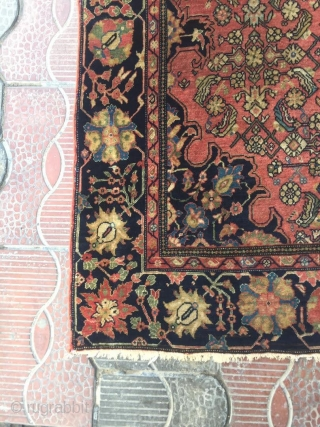 """19th century Farahan Sarouk. 3'4"""" x 5' or 1 x 1.5m. Beautiful colors, greens and abrash in this piece. Finely knotted. Good pile.  Cheers."""