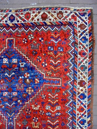 Very Fine 19th Century Qasqhay