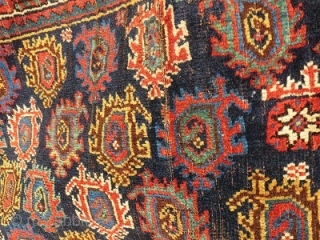 large complete Afshar Khorjin 1900 circa,all good dyes-size135x92cm