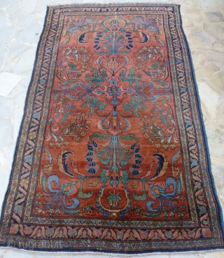 Arak area, 270 x 165 