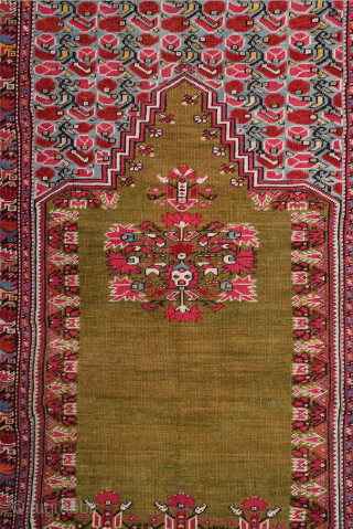 This 19th Century Anatolian Ghordes Green ground prayer rug displays an open field and a steeply towering mihrab shape It's in perfect condition The prayer rugs of this group were a specialty of  ...