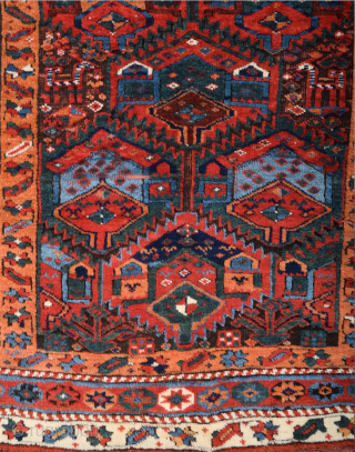 Middle of the 19th Century Sauj Bulack Rug Untouched Piece Size 127 x 201 cm
