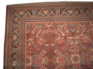 "Ziegler-Mahal Persian knotted circa in 1905 antique, 577 x 330 (cm) 18' 11"" x 10' 10""  carpet ID: P-413