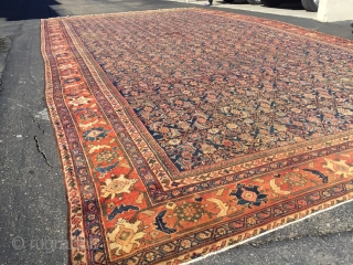 13x22  Antique Sultanabad Mahal Ziegler rug  Handknotted wool  1900's.  Beautiful colors  No cuts or patches no holes  Excelent condition