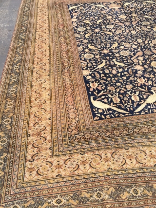 12.5x16 Antique Persian rug 