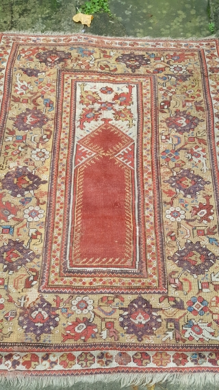 An early 19th century melas rug. 5ft x 3ft9. quite extenive repiling to the red center and other scattered light repairs. Retains all it's charm and is ready for use. price does not  ...