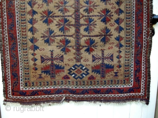 A charming small sized antique belouch prayer rug 108 x 76 cm light wear no holes also is very dusty and will clean well, just found .All natural colours