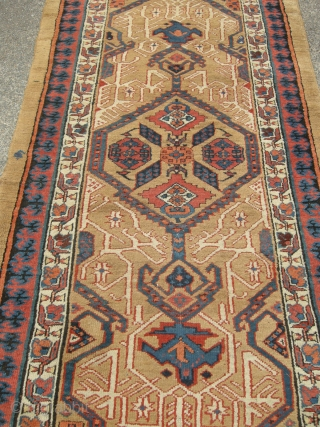 Dated Antique Sarab runner (1295 or approx 1878).Very good original condition no repairs ,one small finger sized hole,macrame ends unravelling. Slightly wider one end than other . A remarkably well preserved antique  ...