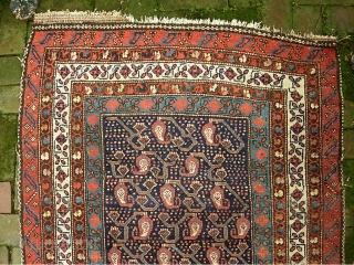Early Tribal Runner.  3 ft 3 inch x 10 ft Lovely, ethnographic w/ archaic old designs. cf. Kurdish/NW mountains area-- circa 1880s? $20 ups shipping to lower 48. as-found. Obviously needs  ...